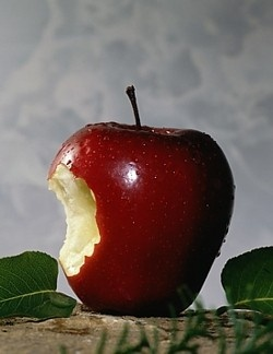 picture of red apple